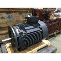 ZYS 系列压缩机专用三相异步电动机ZYS 180L-4-37kW SF=1.15中达电机