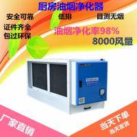 碳烤烧烤油烟净化器 8000风量低空静电分离设备 包邮