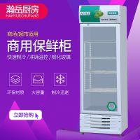 啤酒展示柜 冷藏保鲜柜 立式商用冰箱 单双门饮料柜冰柜