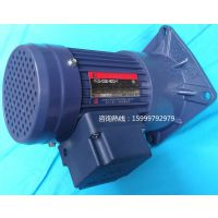 广州供应东力PF22-0100-300C YY100W-4P齿轮减速机