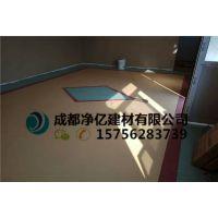 辰溪县电影院专用耐磨型PVC塑胶地板哪里有卖/施工价格