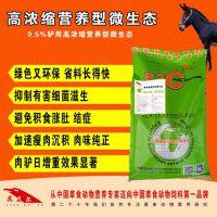 冬季养驴密招+快速育肥+英美尔0.5%高浓缩营养型微生态+预防腹泻