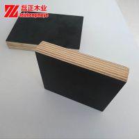 建筑模板 杨木整板整芯 胶合板材 915*1830 小模板
