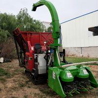 大量供应青贮饲料回收机 玉米秸秆粉碎收割一体机 型号齐全