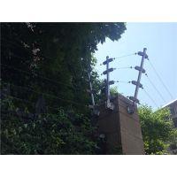 杭州史瑞特电子围栏_脉冲式电子围栏厂家价格报价_脉冲电子围栏主机系统方案