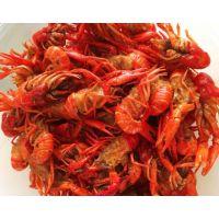 红鳌虾清洗机价格 龙虾油炸机厂家