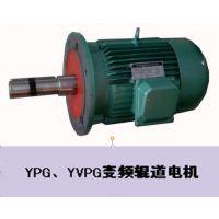 YSG、YGP辊道变频电机