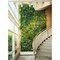 新型环保家居材料空气净化材料--家居植物墙