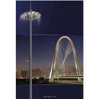 定制380V专用15米-30米高杆灯 户外道路高杆灯 升降式高杆灯