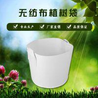 河南博一化纤植树袋厂家直销美植袋花盆容器无纺布种植袋批发