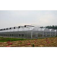 供应用于钢结构|雨棚|广告的pc波浪瓦 阳光板耐力板厂家