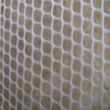 水产养殖网 白色塑料网 安平固腾塑料平网厂