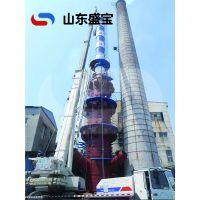 高脱硫率/烟气脱硫设备/山东盛宝/专业生产