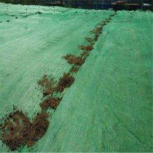 工地施工盖土网 防晒遮光网 聚乙烯盖土网