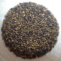 供应中药材红皮甘草种子提供种植技术回收产品