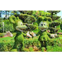 新园五色草观叶立体造型