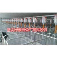 母猪产床兽用机械 养殖料线