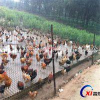 低价促销高速公路护栏网 铁丝围栏网 金属护栏网