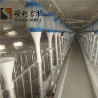 猪场自动喂料线设备自动化养猪设备根据猪舍面积计算