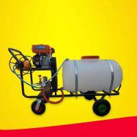 菜园打药喷雾器 汽油动力手推式大容量打药机