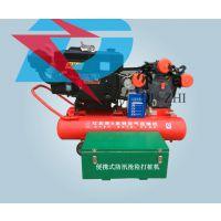 气动防汛植桩机生产厂家 便携式打桩机