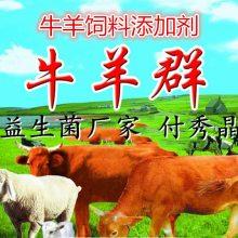 牛用益生菌推荐产品牛长势好肠道好