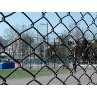瑞才圆管浸塑4米高球场勾花护栏网大量定做