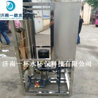 鑫鼎纯变频供水 0.5吨水处理+变频恒压供水系统