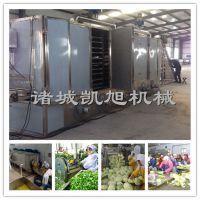 凯旭供应大型脱水蔬菜网带式连续烘干机器 苦瓜片烘干机