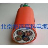 矿物绝缘NG-A(BTLY)北京华远高科生产厂家