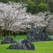 石雕雪浪石切片园林装饰各种规格雪浪石组合套装厂家优惠销售订做
