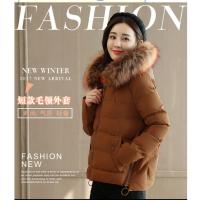 冬季女装羽绒服便宜羽绒服加厚外套厂家一手货源批发