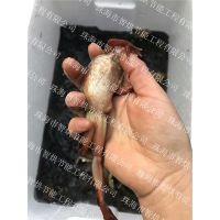 佳木斯智烘牌雪蛤干燥设备省时低价功能全,制冷剂过冷过热回热烘干技术的雪蛤烘房ZH-JN-HGJ03
