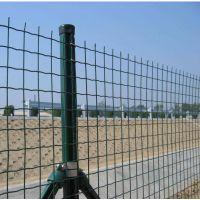 宝川厂家直销波浪形荷兰网/波浪形护栏/绿色防护荷兰网