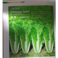 供应河北时丰农业科技开发有限公司时丰牌蔬菜种子时青F1白菜