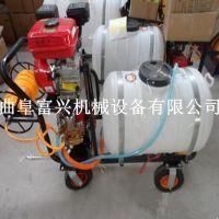 家用果树喷雾杀虫机器价格 富兴直销水旱两用打药机