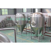100L发酵设备 啤酒设备山东汇冠