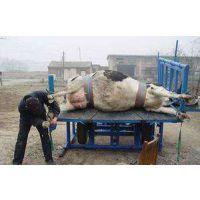 奶牛修蹄车厂家直销,甘肃宾利达