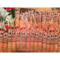 海鲜龙虾多少钱一斤 乳山的海龙虾好吃吗