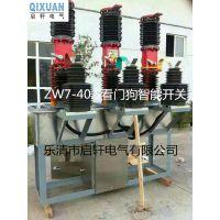 ZW7-40.5真空断路器实力厂家