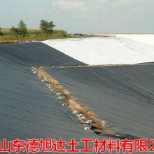 湛江防渗土工膜 糙面土工膜近期价格