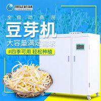 陕西自动定时淋水控温箱式豆芽机 旭众16箱催发豆芽机器设备