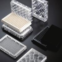 WHB-TC处理细胞培养板-规格6孔 -无菌无酶