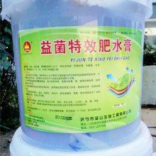 养根膨果钾 碳酶菌海藻膏:生根壮苗、保花保果、膨果增色