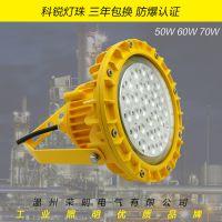 TG732BLED防爆灯 免维护LED防爆灯50W