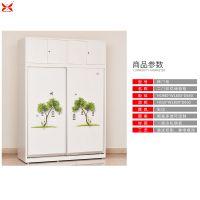 洛阳钢制文件柜展示柜 先导铁皮衣柜文件柜家用推拉柜订制