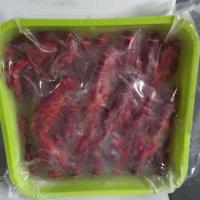 速冻小龙虾 4-6 原味出口规格
