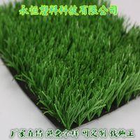 足球场人造草坪 40mm-55mm标准运动草坪 全国可包工包料施工