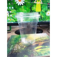 一次性透明通用爆米花塑料桶/杯