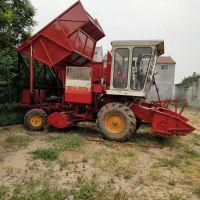 大型黑麦草靑储粉碎回收机 玉米秸秆青贮收割机 玉米靑储机厂家
